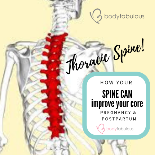 thoracic_spine_core